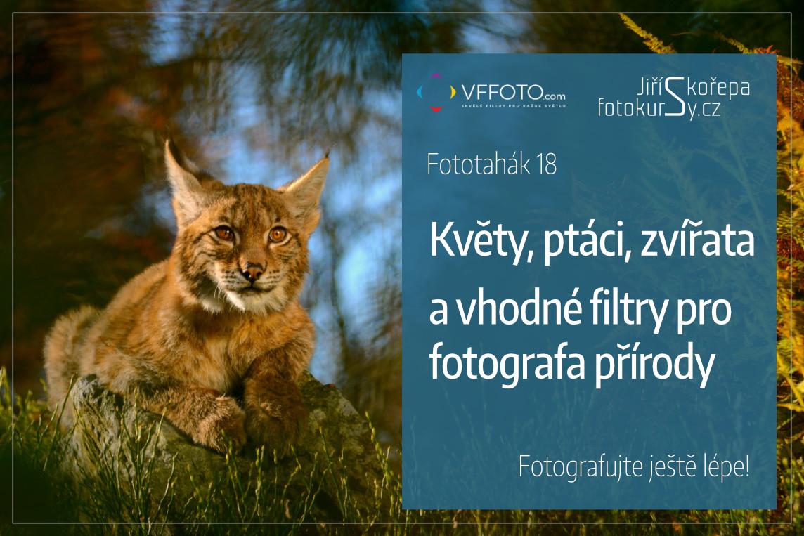 Povolte prosím zobrazení obrázků/Please allow images